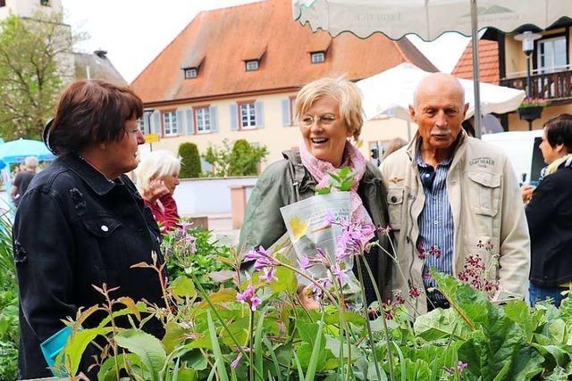 Der Frühling auf dem Gutshof lockt viele Besucher