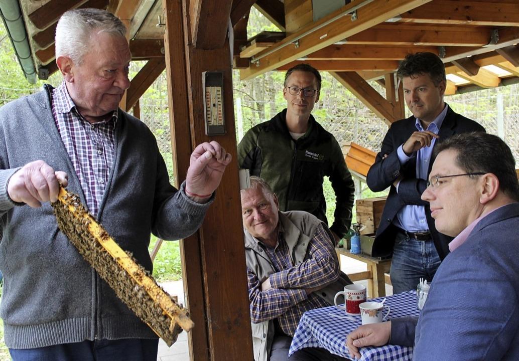 Dass die Bienen jetzt auch die Politik...bias Link (vorne) und Bertold Meister.  | Foto: Christa Maier