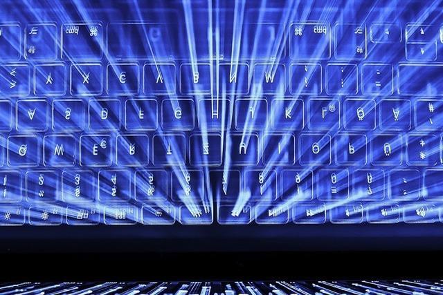 Truppe gegen Cyber-Kriminalität