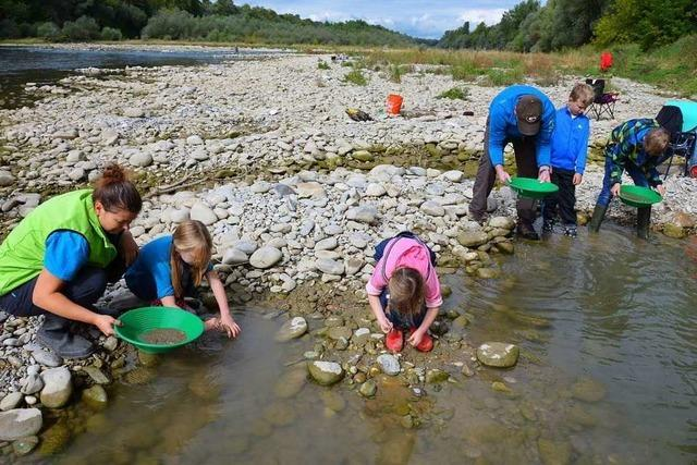 Beim Goldwaschen im Altrhein kann man fündig werden