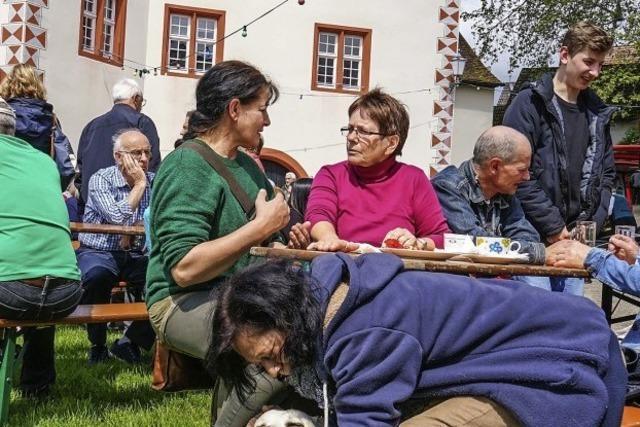 Regen kümmert Kilwi-Gäste wenig