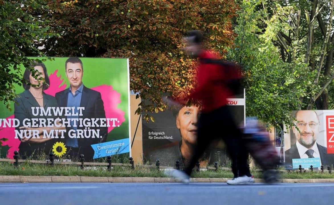 Wahlplakate der Grünen zur Europawahl sollen beschädigt worden sein.  | Foto: Kay Nietfeld