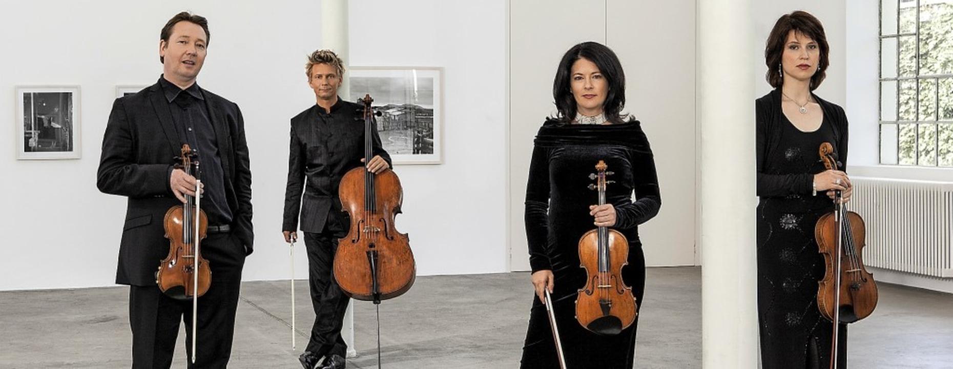 Das international gefragte Minguet-Quartett     Foto: Frank Rossbach