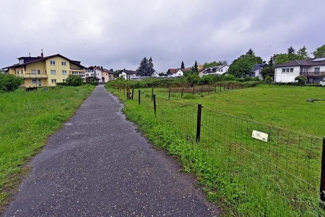 Das Baugebiet Obergrün in Betzenhausen soll dichter bebaut werden als zunächst geplant