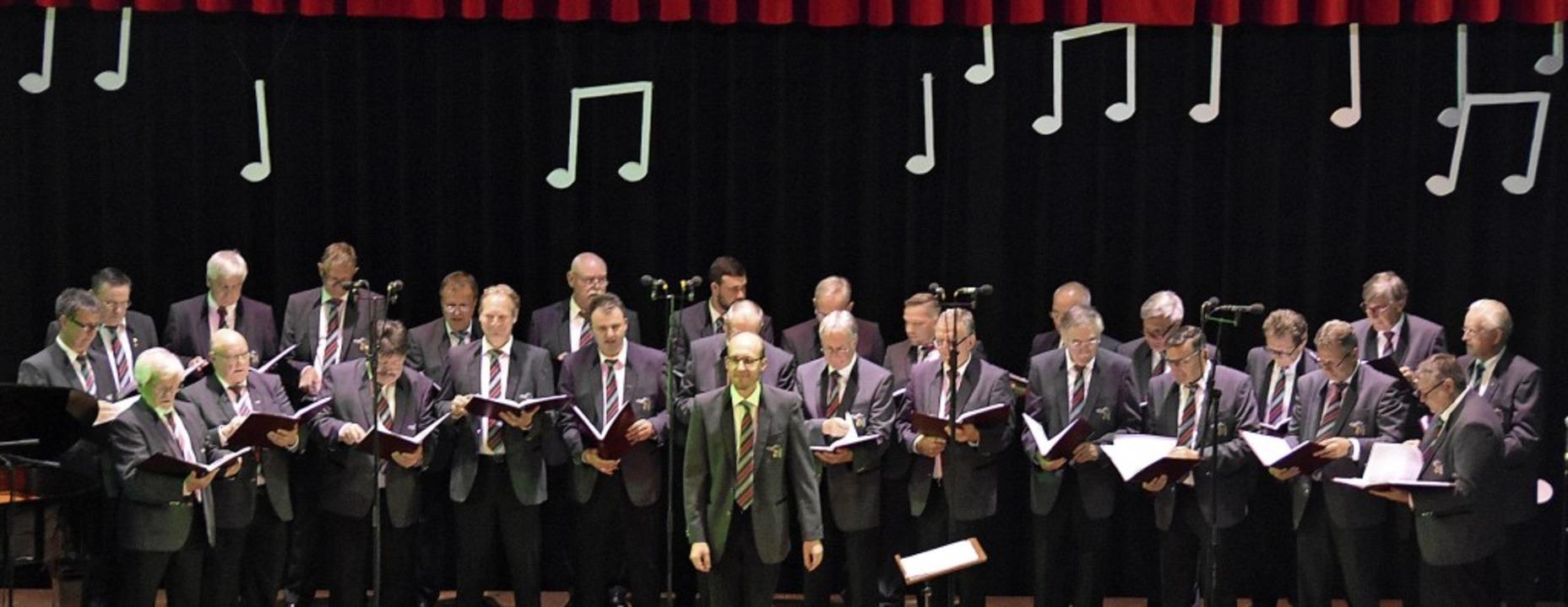 Neue Ideen  setzte der Männergesangverein Liederkranz in Gundelfingen um.     Foto: Andrea Steinhart