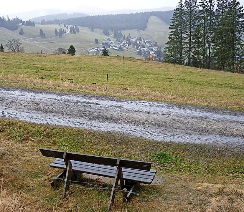 Am Bergrücken  Radschert ist ein Hotelbau geplant.    Foto: Sattelberger