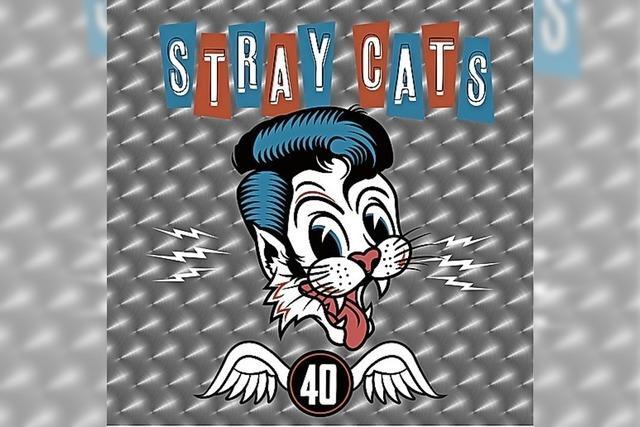 Stray Cats: Im zweiten von neun Leben