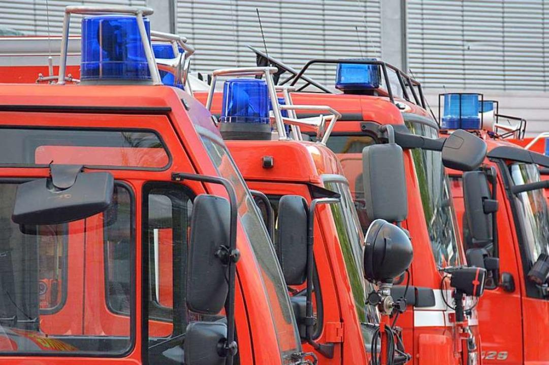 In Lörrach musste die Feuerwehr wegen ... Brandstiftung ausrücken (Symbolbild).  | Foto: Hannes Lauber