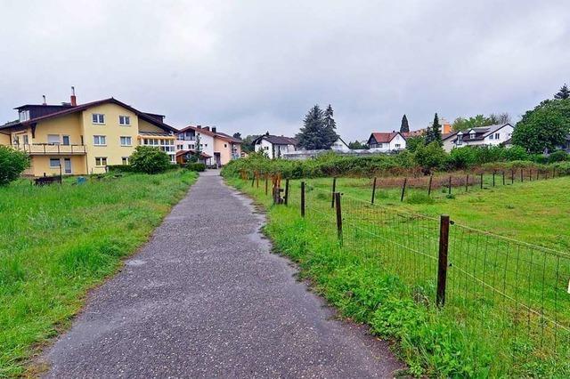Vorentwurf des Baugebiets Obergrün in Betzenhausen steht in der Kritik