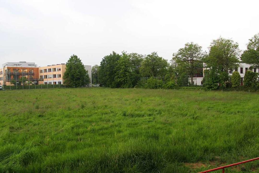 Im Zentralgebiet, wo früher die Bälle ...wählende Gemeinderat entscheiden muss.  | Foto: Horst David