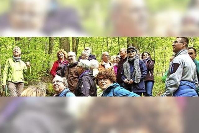 Ein Waldgebiet voller spannender Historie