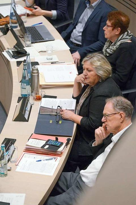 Nachdenklich: Michael Moos, Irene Voge...ate Buche (von vorne) in einer Sitzung  | Foto: Ingo Schneider