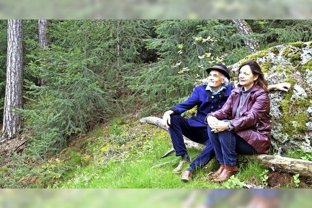 Das Erspüren der Waldkräfte