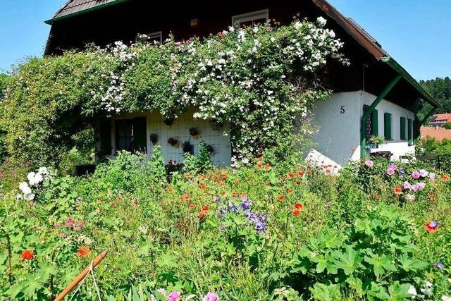 Zu den Nachhaltigkeitstagen finden in Schopfheim viele Aktionen statt