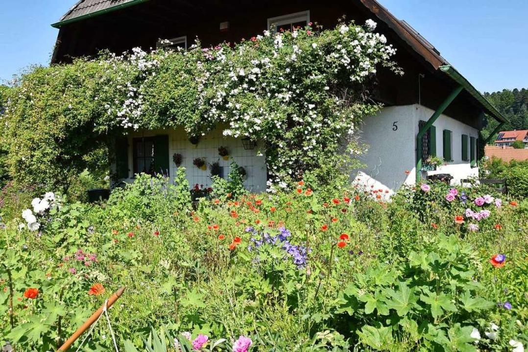 Auch naturnahes Gärtnern steht auf der Agenda (Symbolbild).  | Foto: Markus Donner