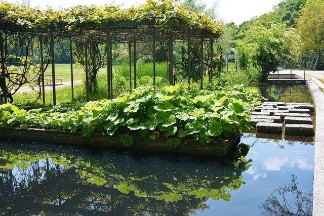 Warum die Weiler Wassergärten ohne Wasser waren