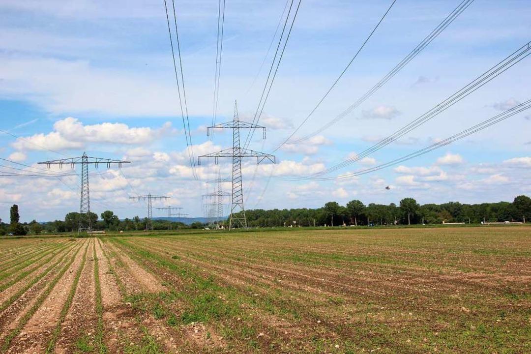 Die Südvarianten der B 31 würden entla...und Leitungen Aussiedlerhöfe zu sehen.  | Foto: Mario Schöneberg