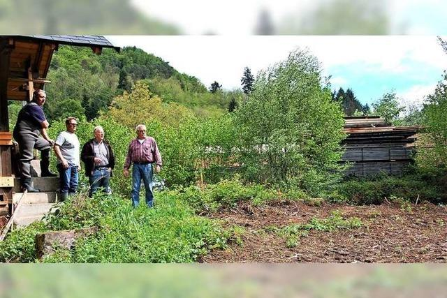Die Fischtreppe in Kuhbach soll im November fertig sein