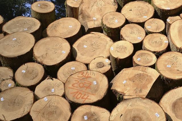 Einige offene Fragen zur künftigen Waldbetreuung