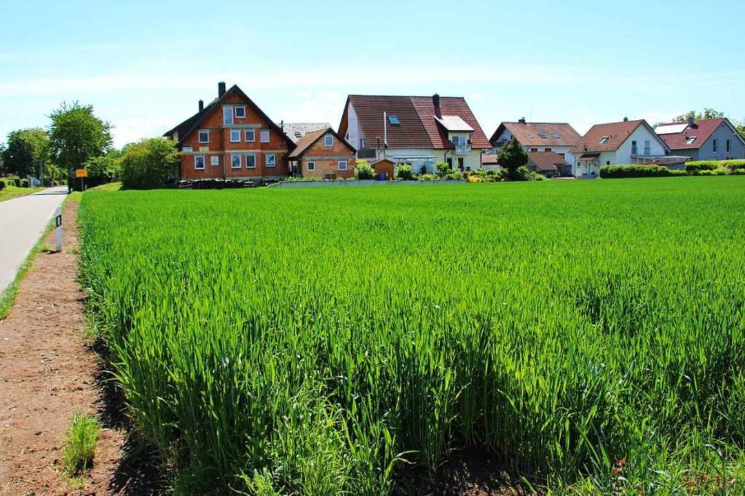 Für den Ankauf von Grundstücken in ein...uro im aktuellen Haushalt eingestellt.  | Foto: Mario Schöneberg