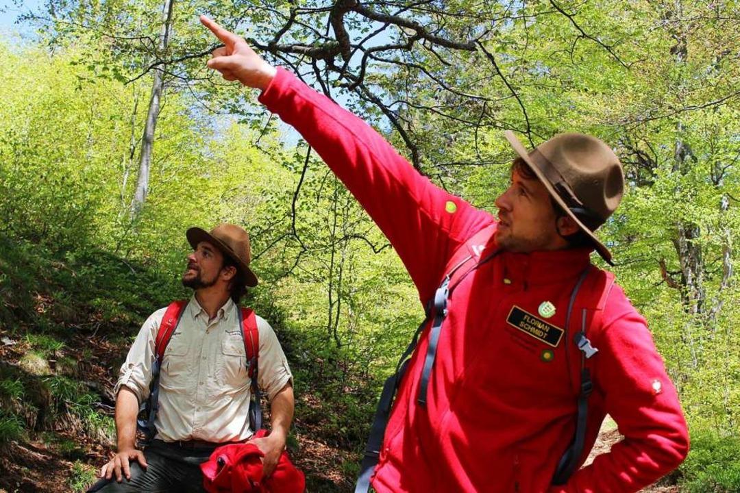 Wissen, wo es lang geht: Ranger Florian Schmidt (vorne) und Sebastian Wagner  | Foto: Erich Krieger