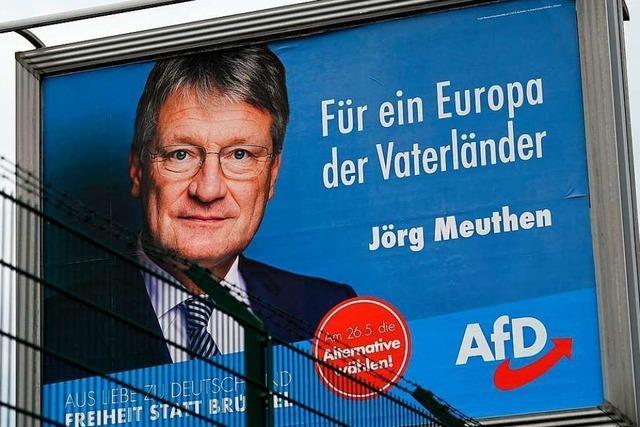 AfD hofft auf ein gutes Ergebnis bei Europawahl