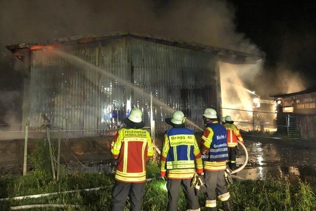 Scheune bei Herbolzheim brennt ab – Futter für 105 Tiere komplett vernichtet