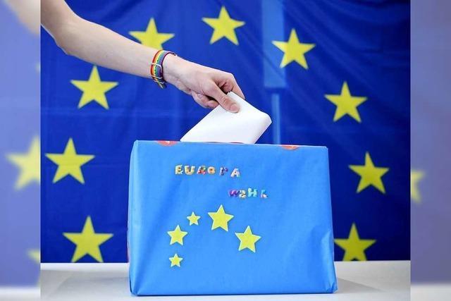 Das sind die Ergebnisse der Europawahl 2019 in Freiburg