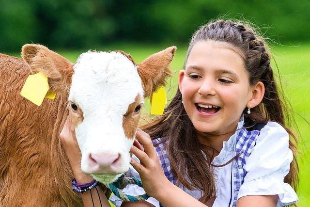 Lecker, lustig, lehrreich: Großes Biosphärenfest in Todtnau