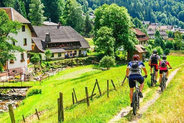 Die schönsten Radstrecken Südbadens