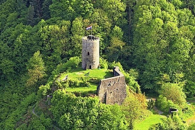 Burg erleben und Wein genießen