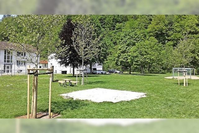 Stadt pflanzt 37 neue Bäume in Schopfheim