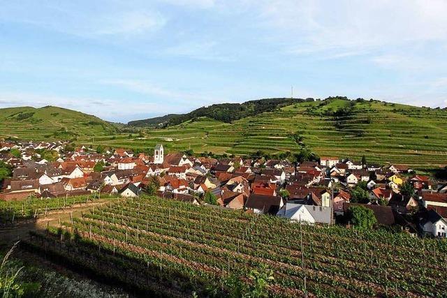 Vogtsburger Gemeinderat stellt Förderprogramm für vier Stadtteile auf