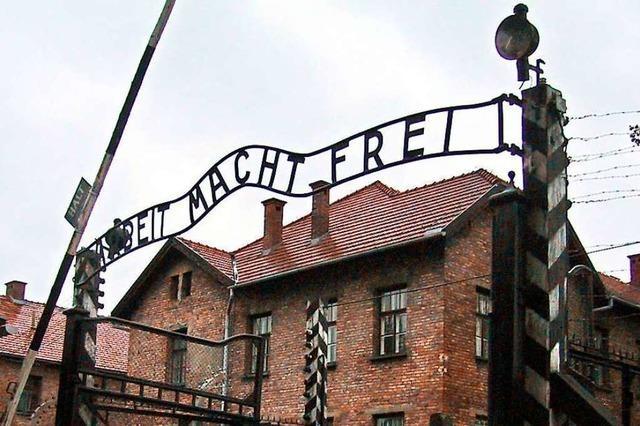 Auschwitz in 3-D-Analyse: Die späte Suche nach Gerechtigkeit