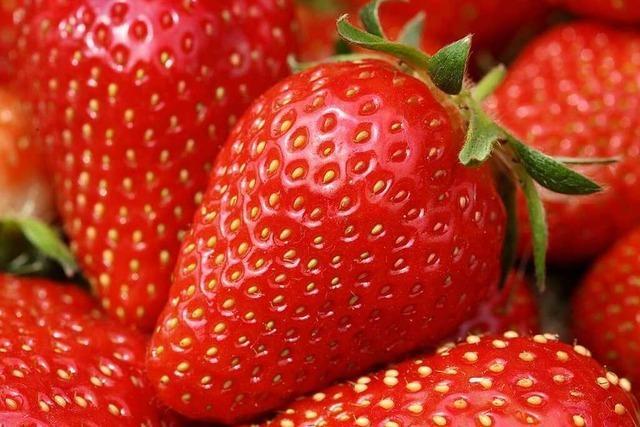 Fünf leckere Rezepte für das perfekte Erdbeer-Dessert