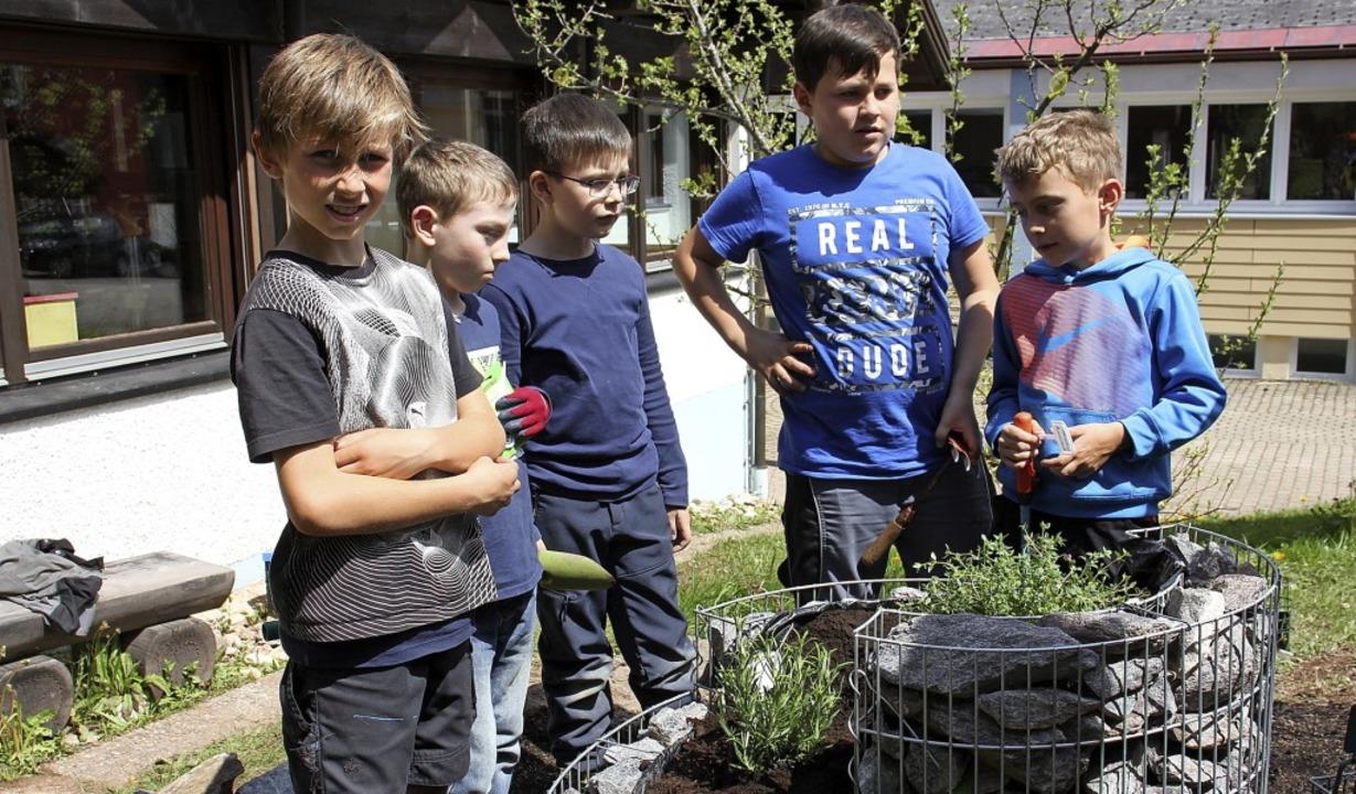 Die Schüler der Lichtenbergschule haben jetzt eine  Kräuterspirale.   | Foto: Gert Brichta