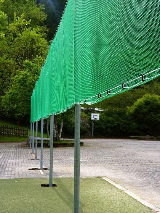 Ökologischer Ausgleich: ein Zaun, der Fledermäusen als  Orientierung dient  | Foto: Sattelberger