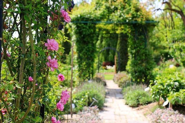 Am Wochenende findet im Landhaus Ettenbühl das große Rosenfest statt