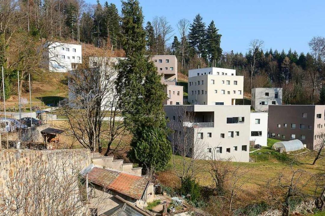 Die Wohnhäuser des UWC in der Kartaus (Archivbild).  | Foto: Ingo Schneider