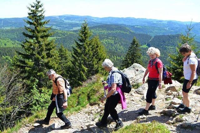 BZ-Leser wanderten auf dem neueröffneten Premiumwanderweg Belchensteig