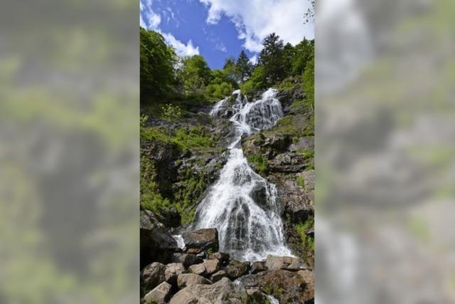 Eine Wanderung zum Todtnauer Wasserfall