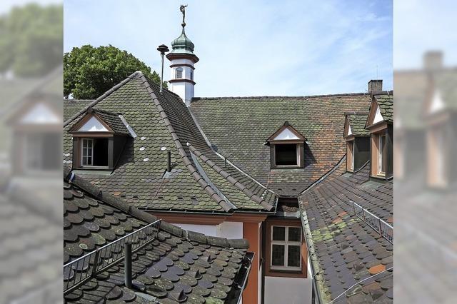 Beitrag für Dachsanierung