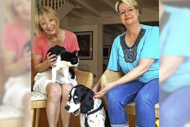 Hilfe für misshandelte Tiere