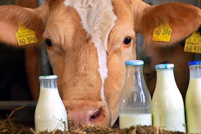 Die Geschichte der Milchzentralen in Neustadt und Titisee