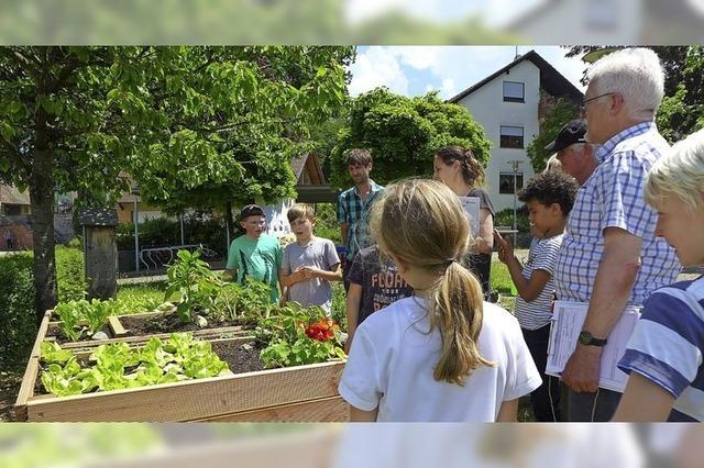 Wenn Schüler zu kleinen Gartenexperten werden
