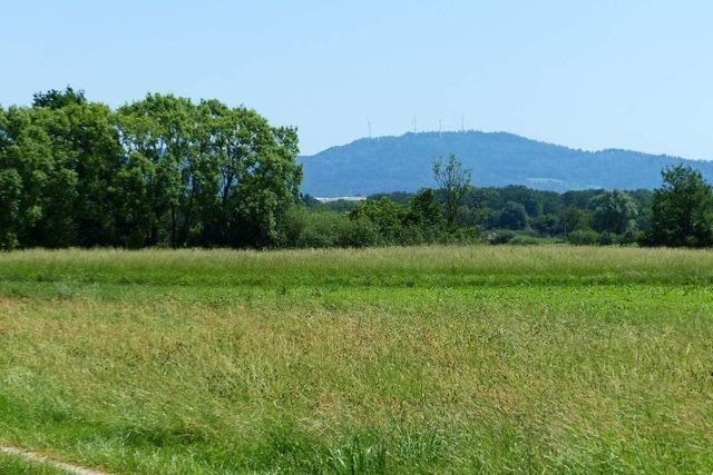 Der Holzhauser Ortschaftsrat lehnt ein Gewerbegebiet im Neufeld ab