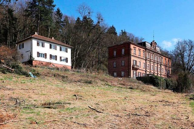 Wann auf dem Altenberg gebaut wird, ist noch immer unklar