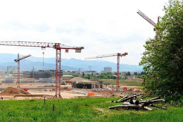 Wie auf der Baustelle für das SC-Stadion Problempflanzen bekämpft werden