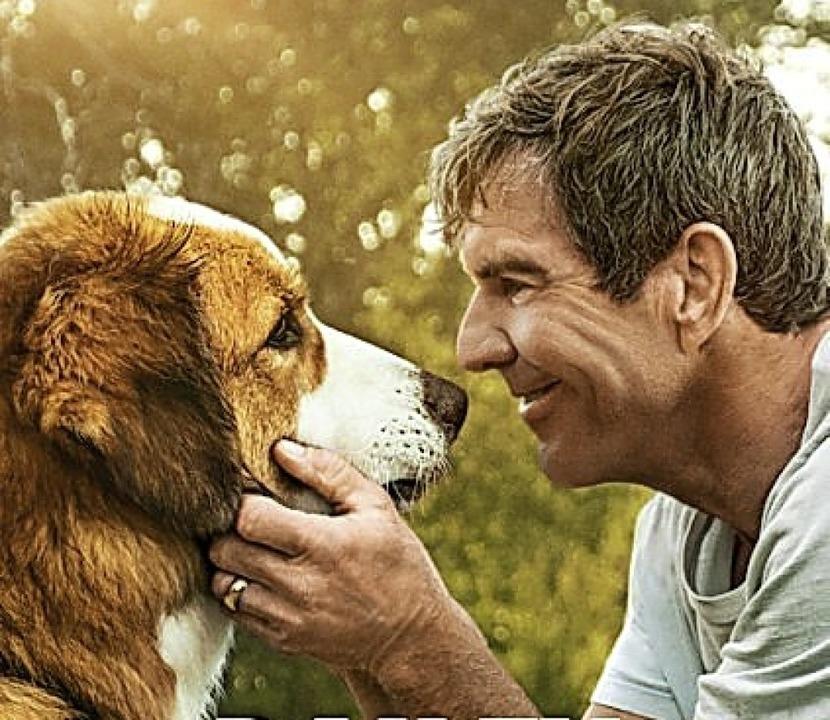 Hund  Bailey, Dennis Quaid    Foto: Constantin