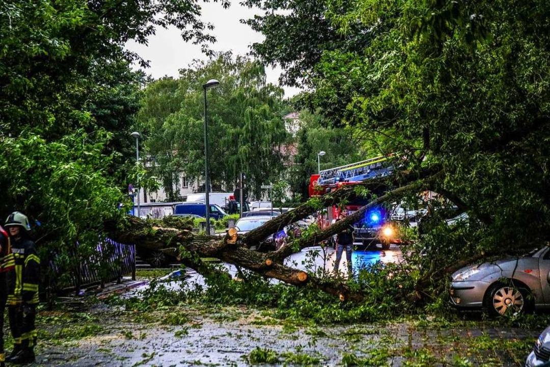 Gewitterschäden in Brandenburg  | Foto: Julian Stähle (dpa)